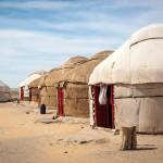 Wüste Kysylkum